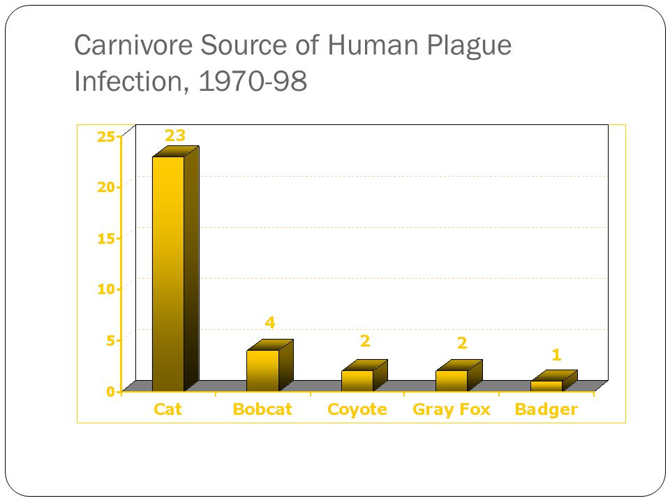 Carnivore Source of Human Plague Infection, 1970-98
