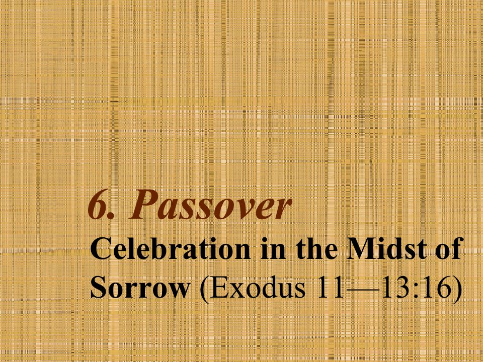 Celebration in the Midst of Sorrow (Exodus 11—13:16)