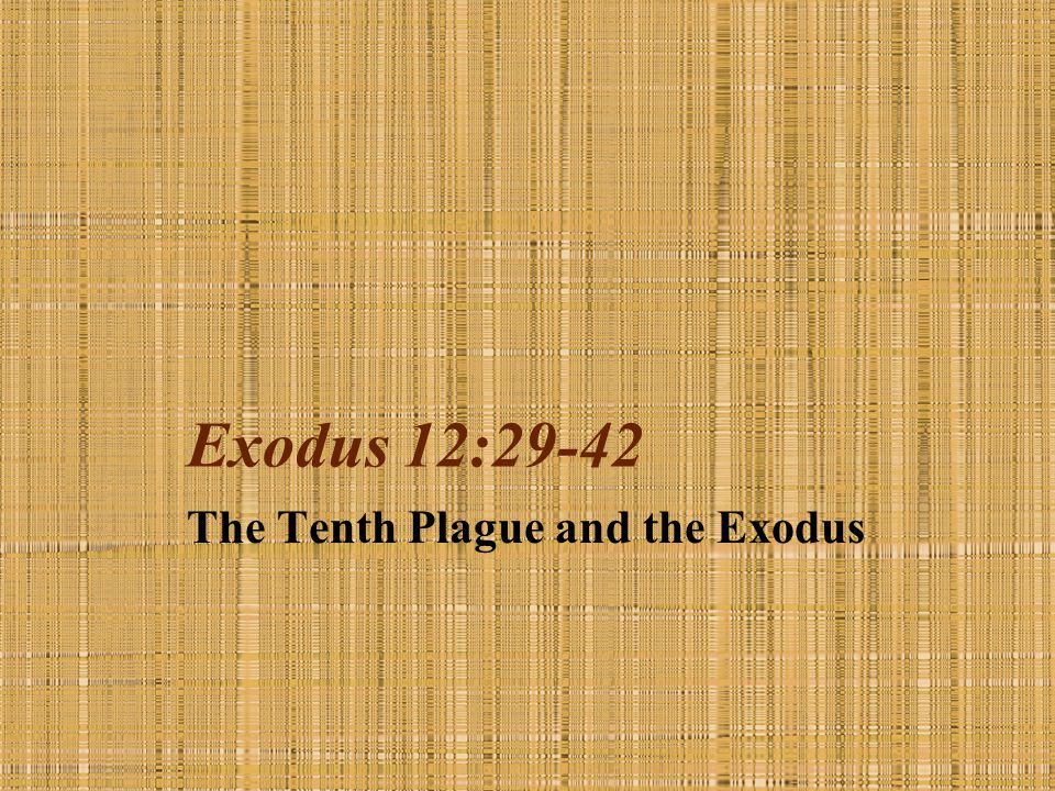 The Tenth Plague and the Exodus