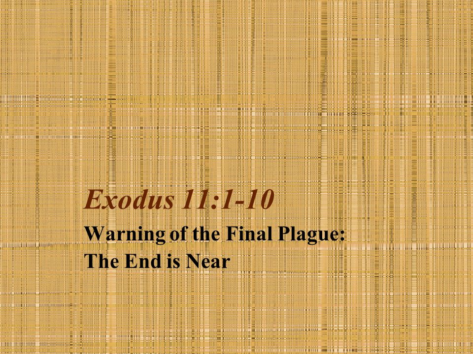 Warning of the Final Plague: The End is Near