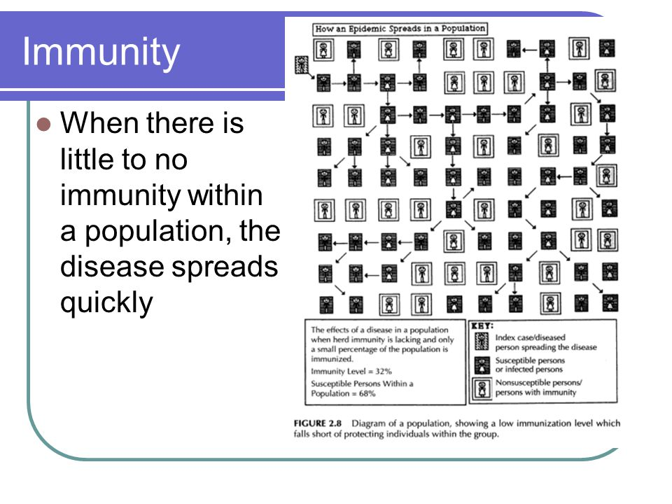 Immunity When there is little to no immunity within a population, the disease spreads quickly