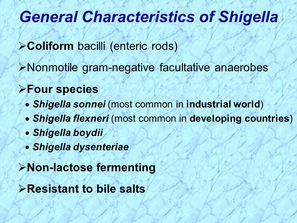 General Characteristics of Shigella
