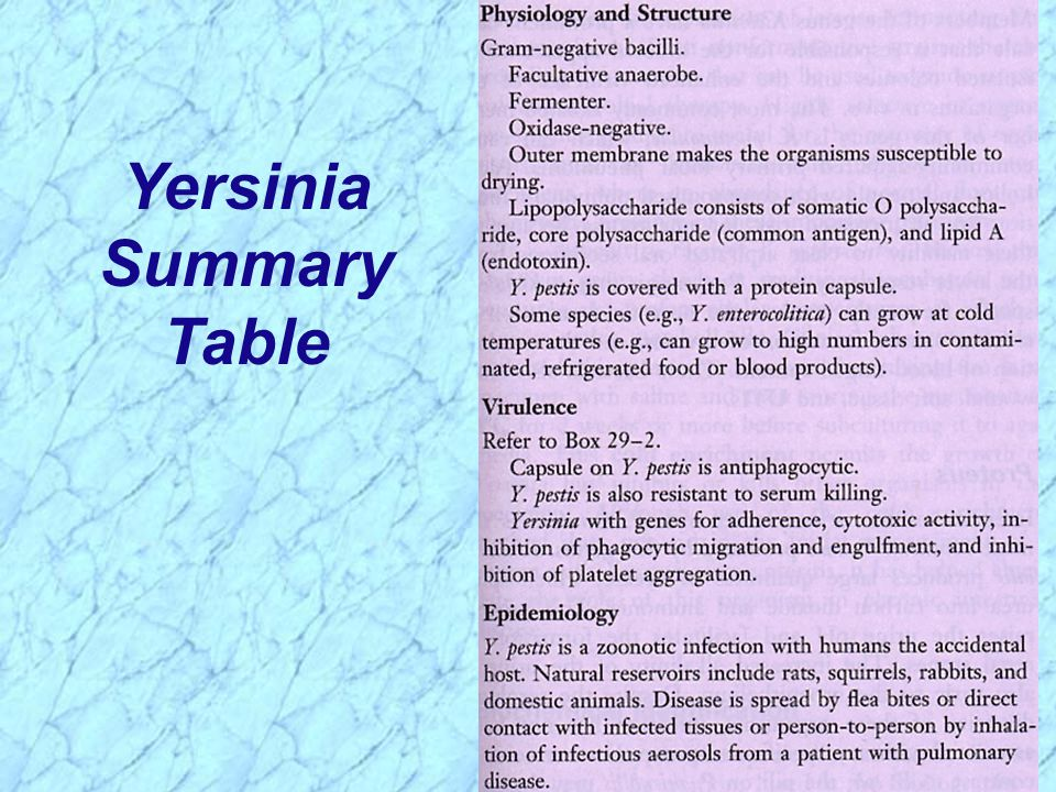 Yersinia Summary Table