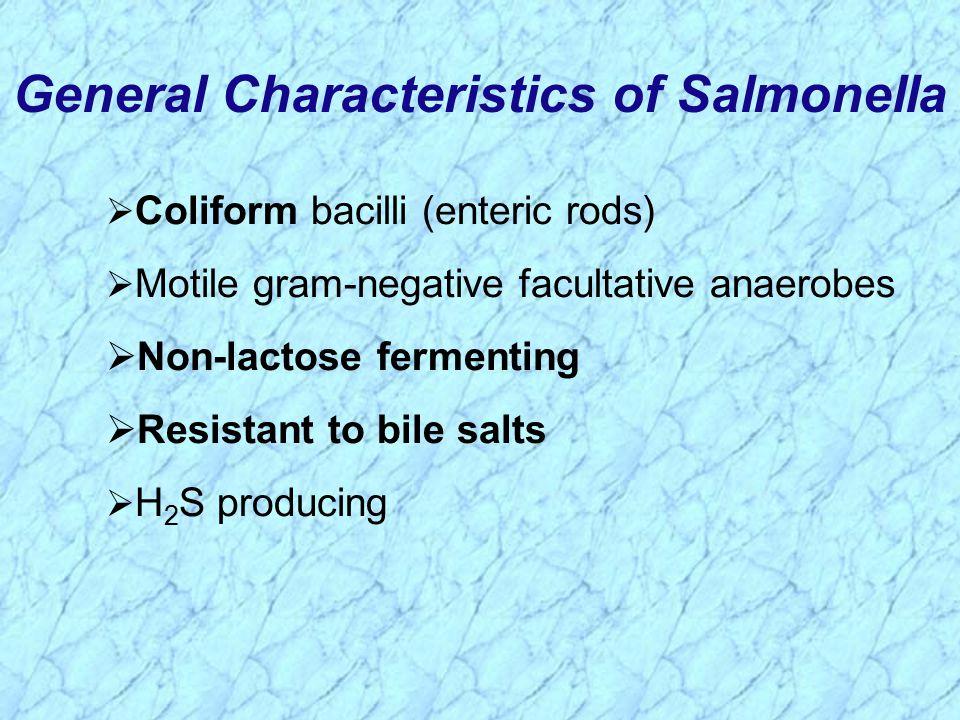 General Characteristics of Salmonella