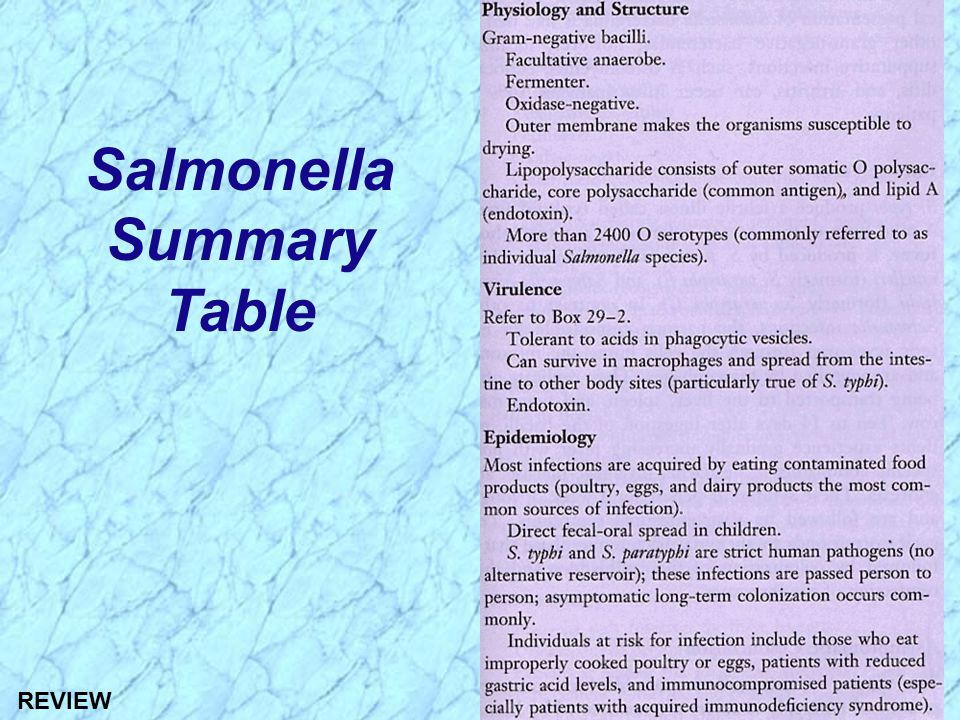 Salmonella Summary Table
