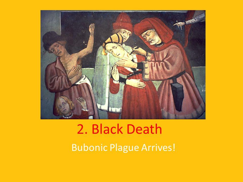 Bubonic Plague Arrives!
