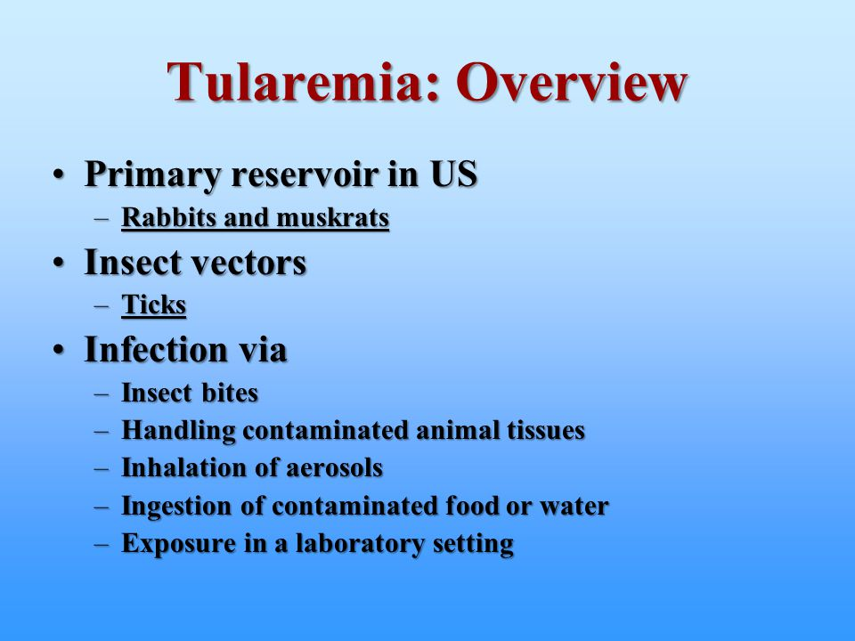 Tularemia: Overview Primary reservoir in US Insect vectors