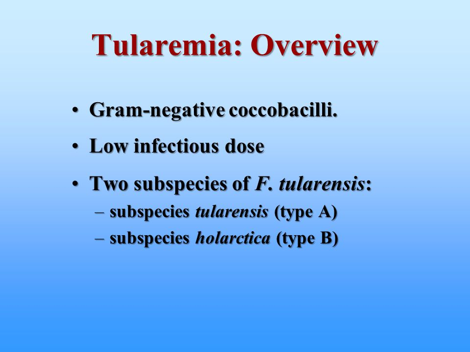 Tularemia: Overview Gram-negative coccobacilli. Low infectious dose
