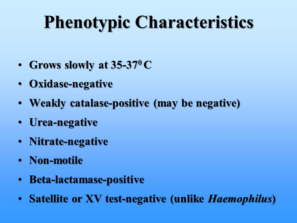 Phenotypic Characteristics