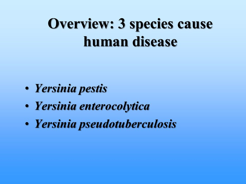 Overview: 3 species cause human disease