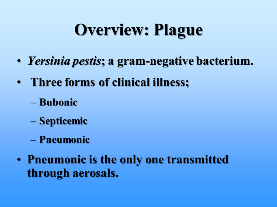 Overview: Plague Yersinia pestis; a gram-negative bacterium.