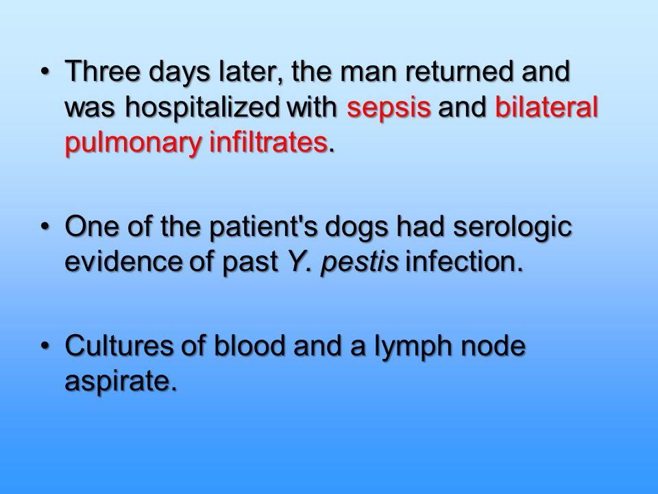 Cultures of blood and a lymph node aspirate.