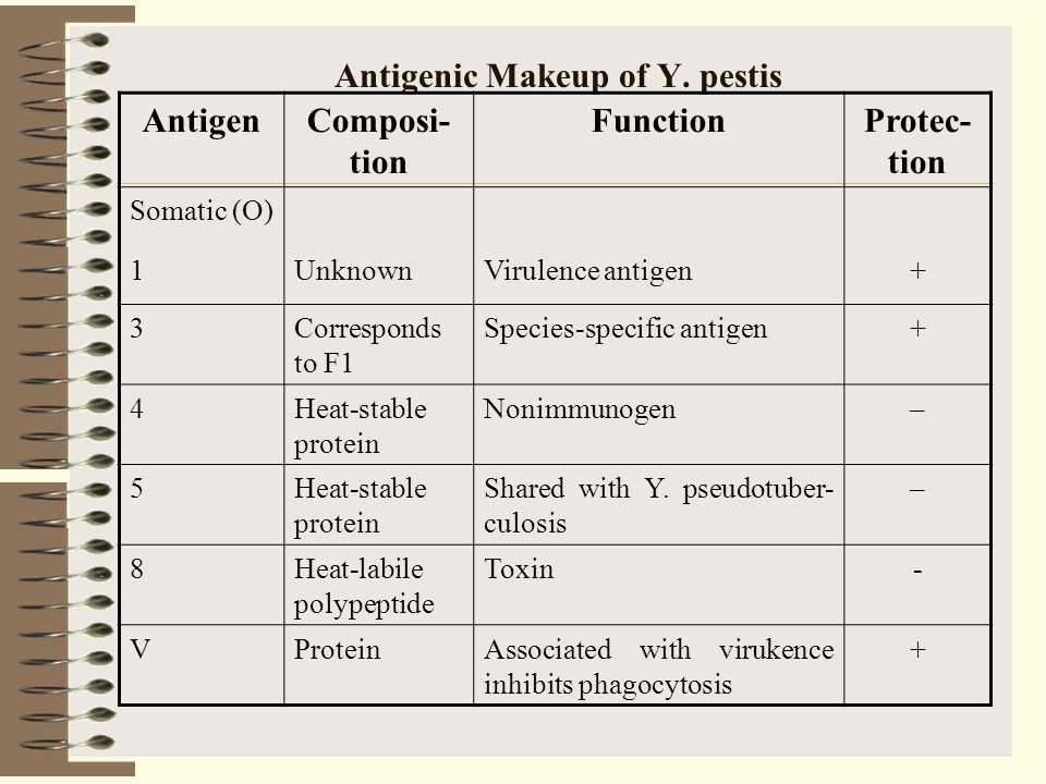 Antigenic Makeup of Y. pestis