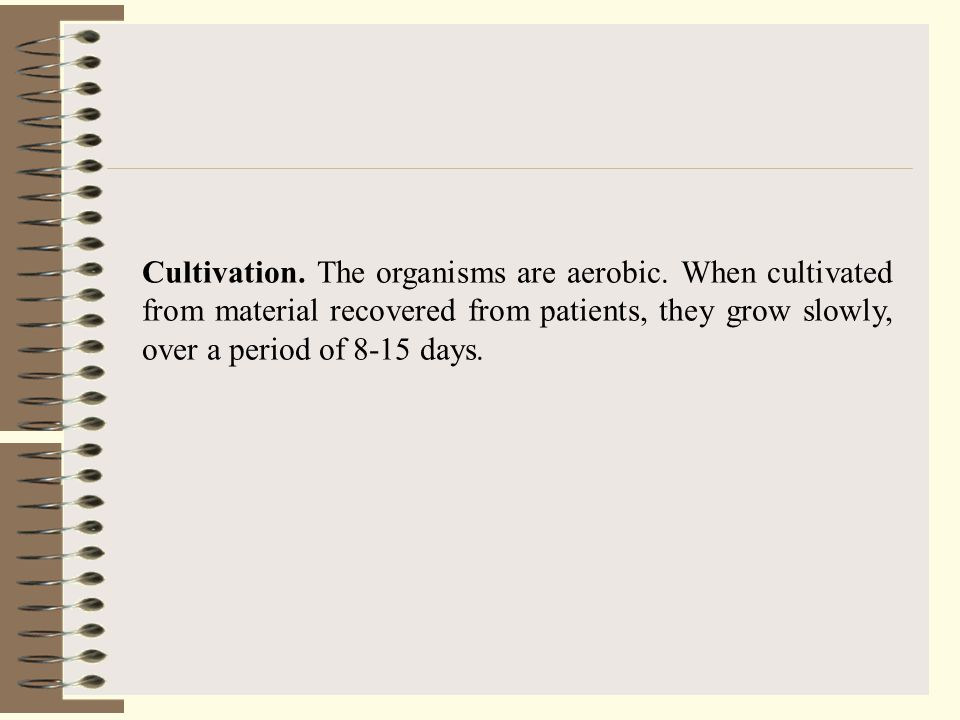 Cultivation. The organisms are aerobic