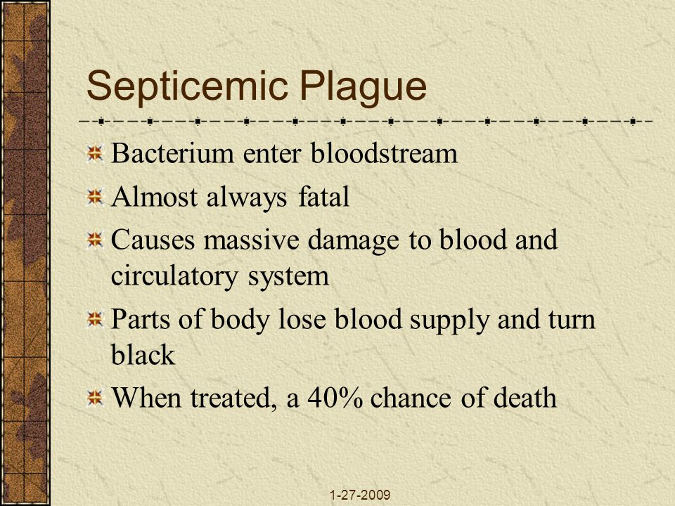 Septicemic Plague Bacterium enter bloodstream Almost always fatal