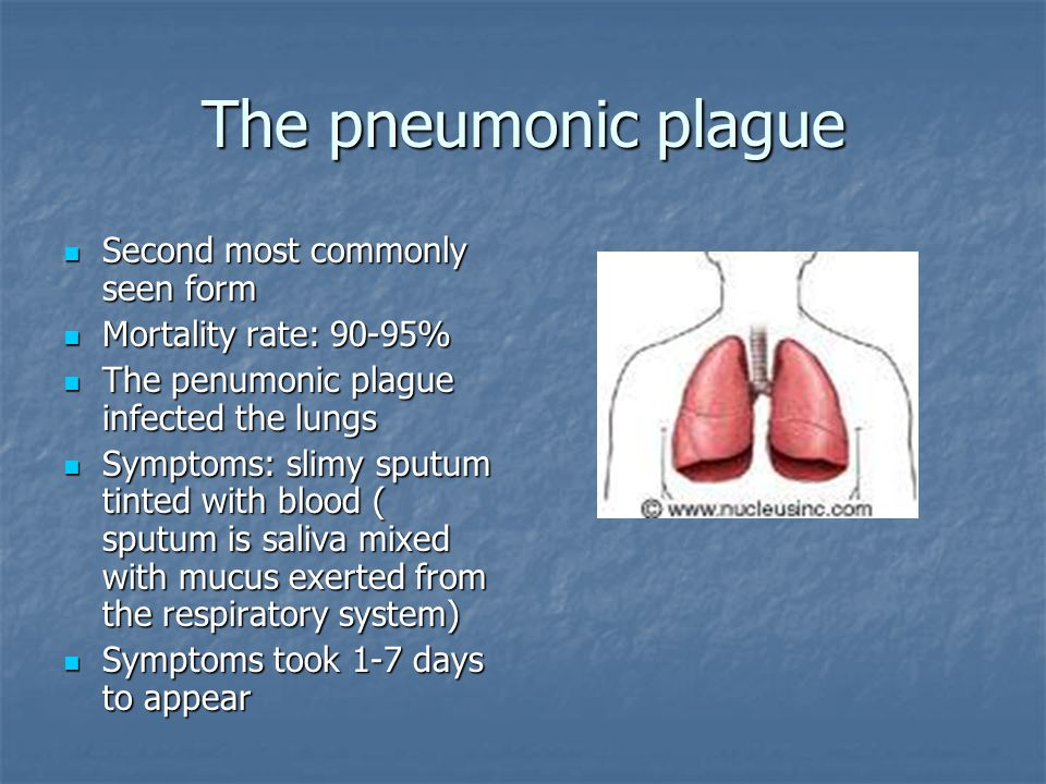 The pneumonic plague Second most commonly seen form