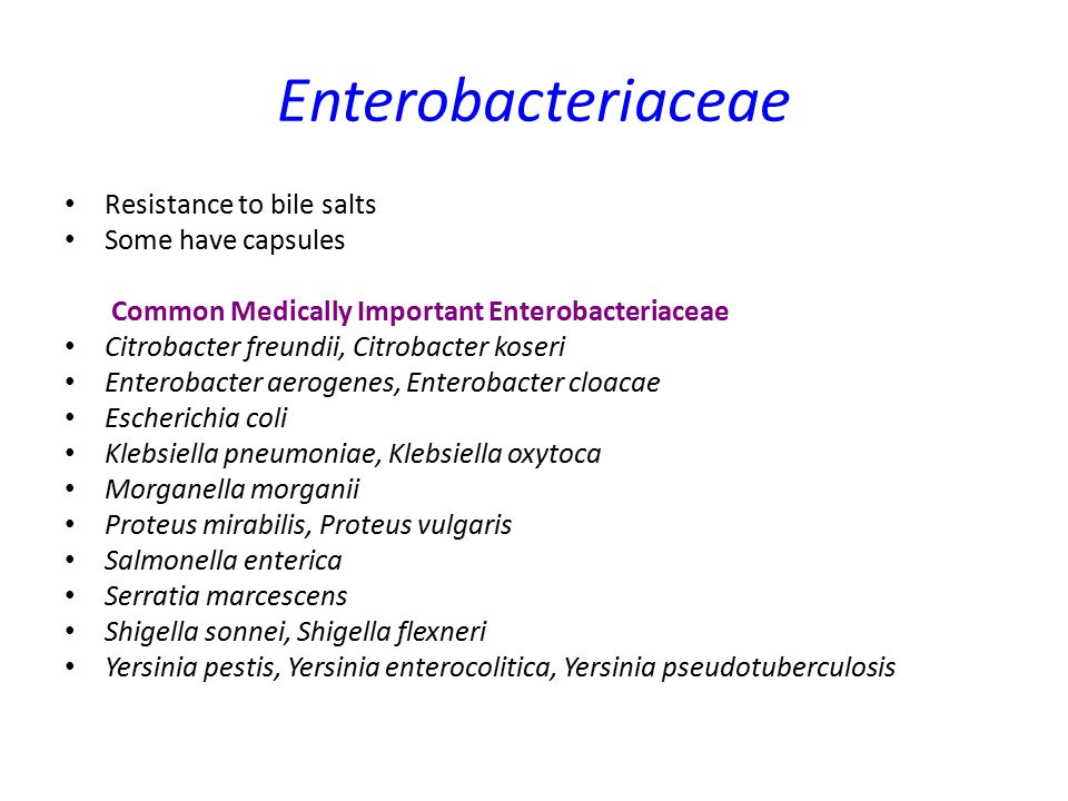 Enterobacteriaceae Resistance to bile salts Some have capsules