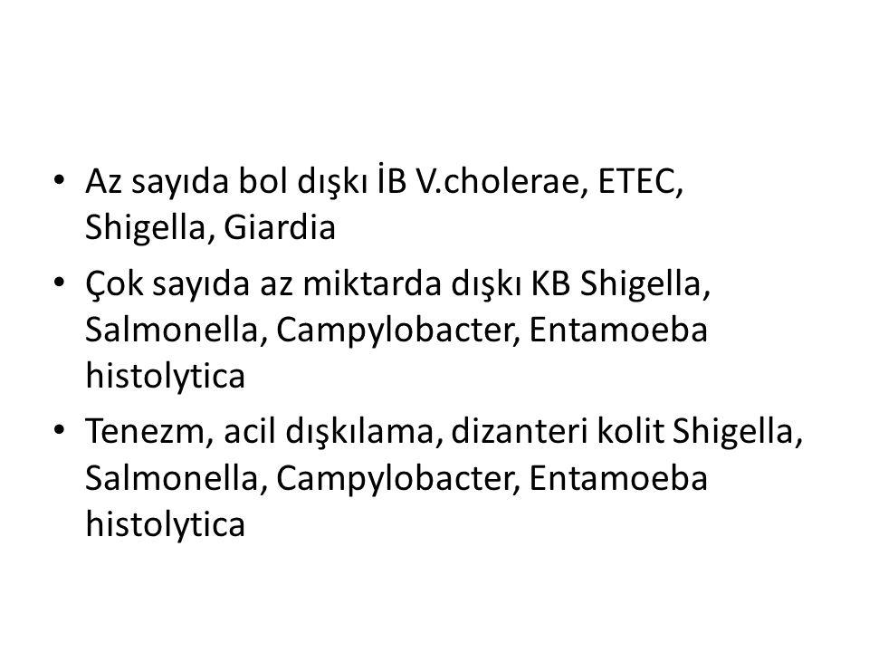 Az sayıda bol dışkı İB V.cholerae, ETEC, Shigella, Giardia