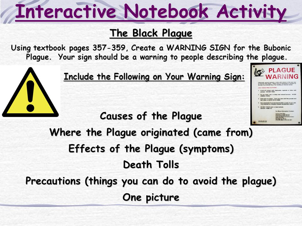 Interactive Notebook Activity