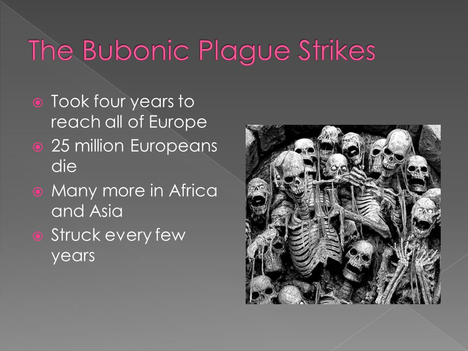 The Bubonic Plague Strikes