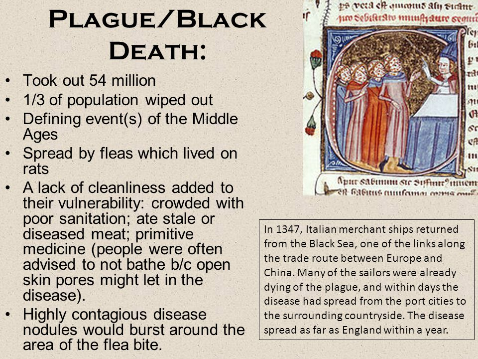 Plague/Black Death: Took out 54 million 1/3 of population wiped out