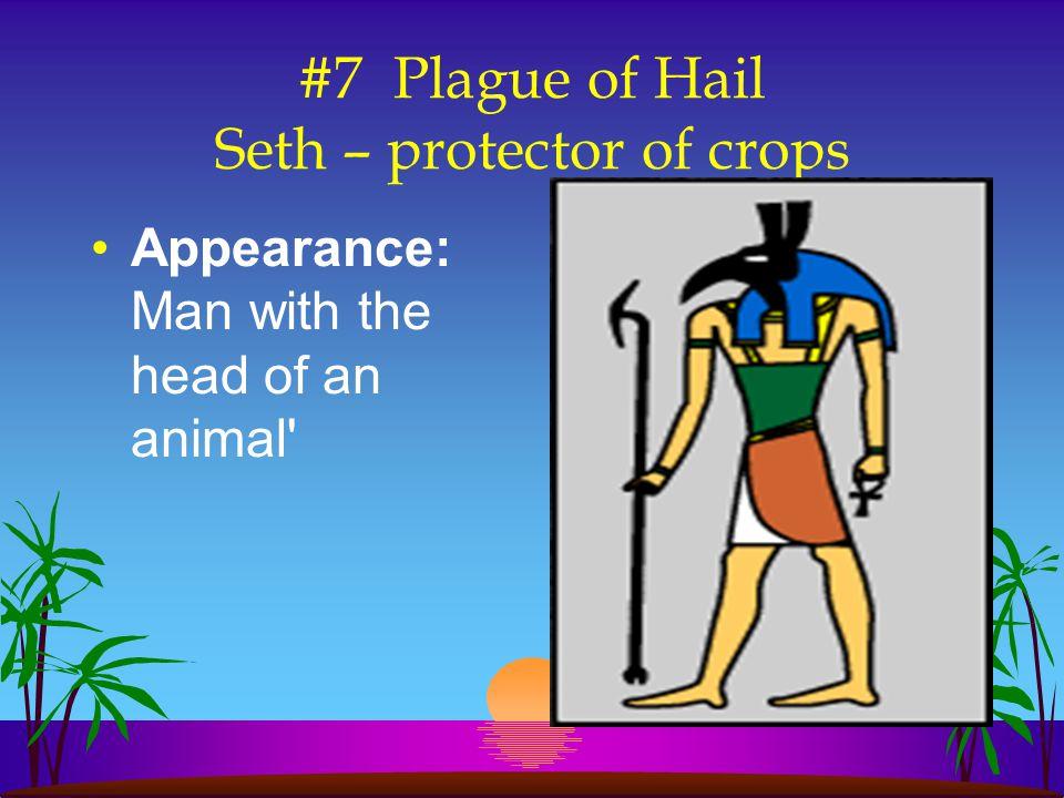 #7 Plague of Hail Seth – protector of crops