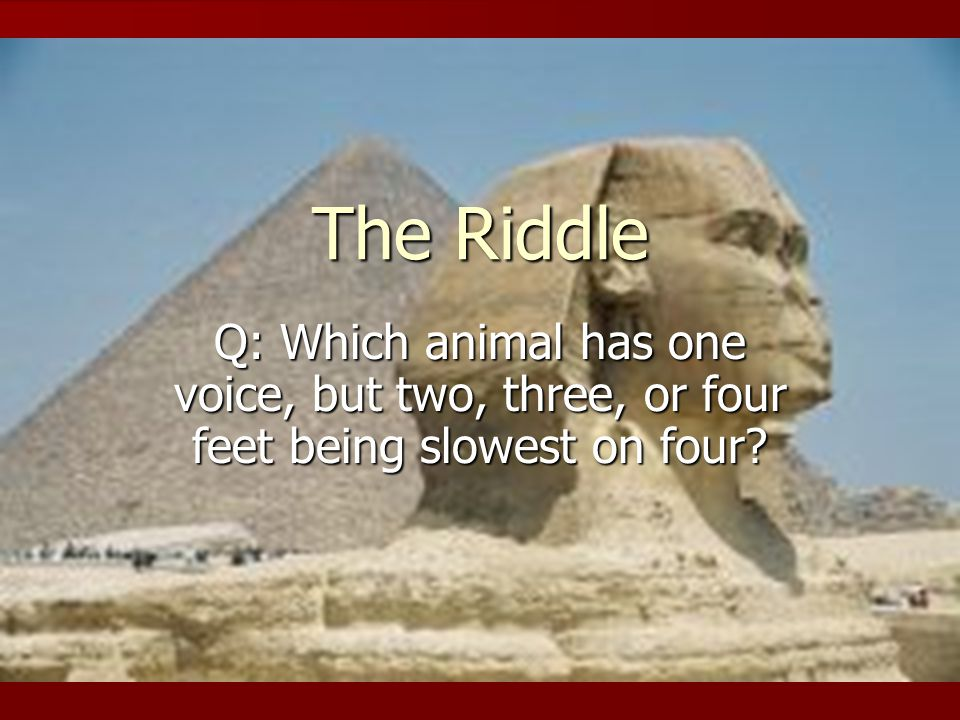 The Riddle Q: Which animal has one voice, but two, three, or four feet being slowest on four