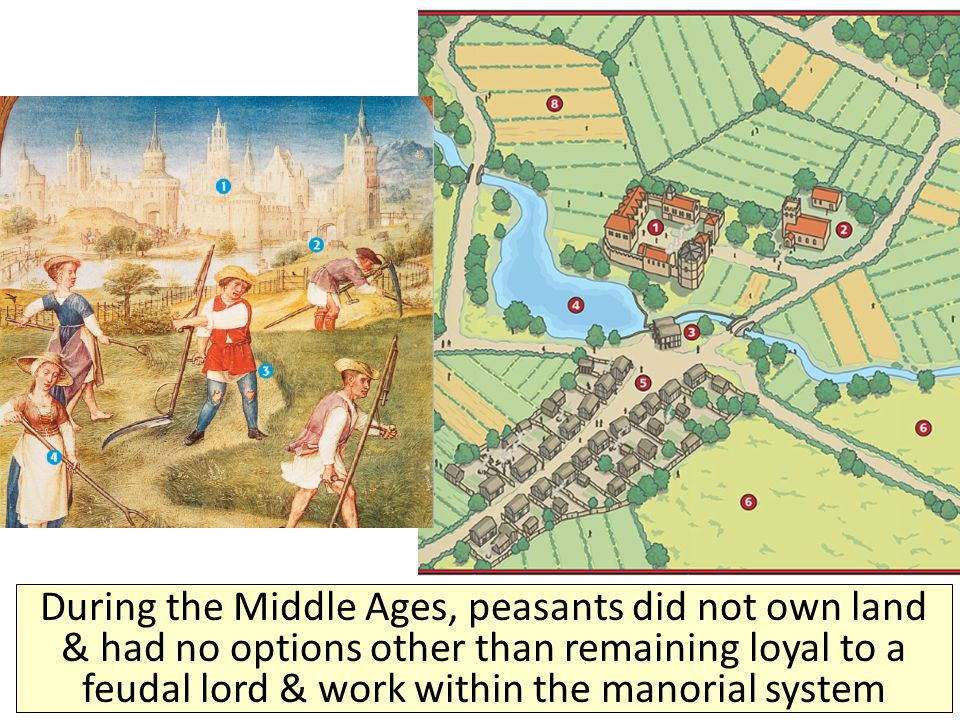 During the Middle Ages, peasants did not own land & had no options other than remaining loyal to a feudal lord & work within the manorial system