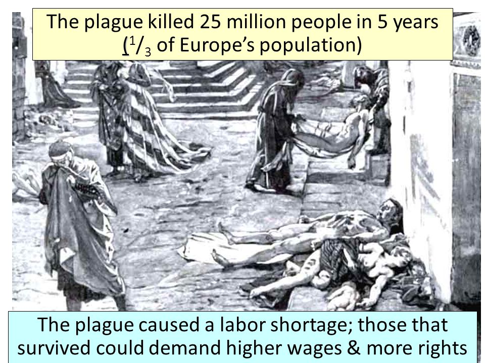 The plague killed 25 million people in 5 years (1/3 of Europe's population)