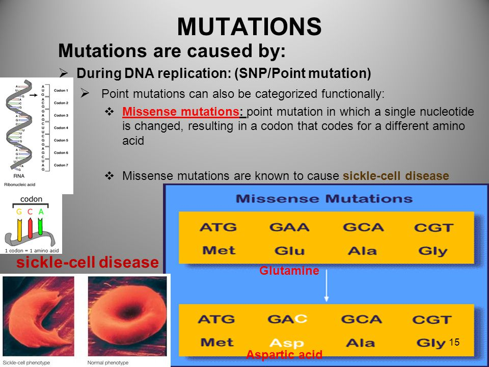MUTATIONS Mutations are caused by: sickle-cell disease