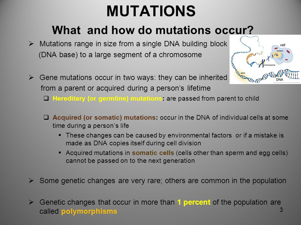 MUTATIONS What and how do mutations occur