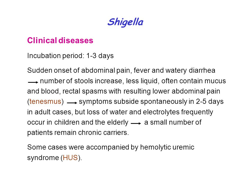 Shigella Clinical diseases Incubation period: 1-3 days