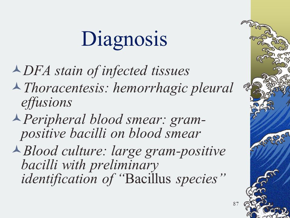 Diagnosis DFA stain of infected tissues