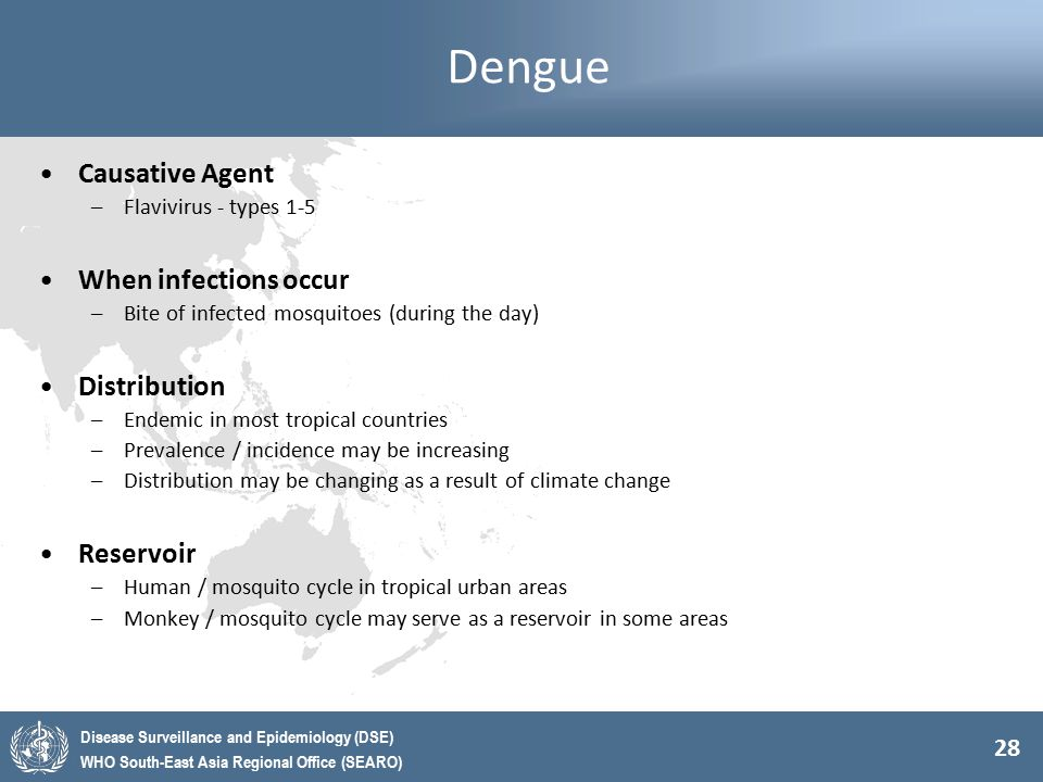 Dengue Causative Agent When infections occur Distribution Reservoir
