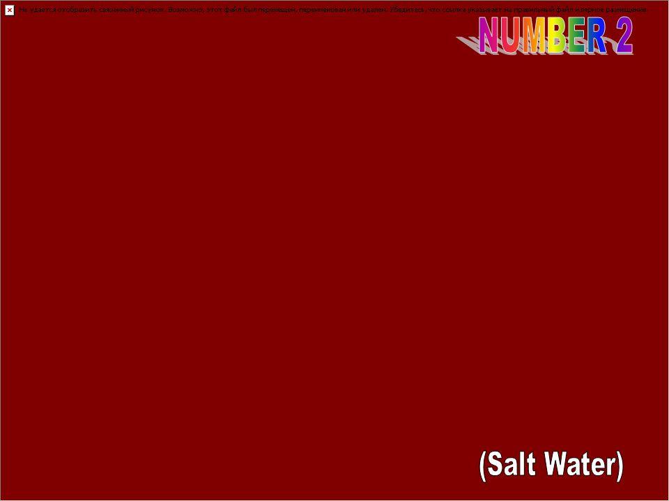 NUMBER 2 (Salt Water)