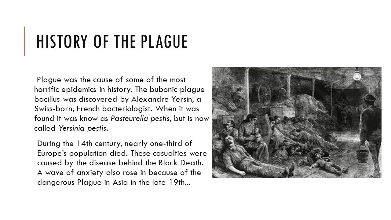 disease particularly the plague was the Ecologic features of plague outbreak areas ecologic features of plague outbreak areas, democratic republic of plague is a zoonotic disease.