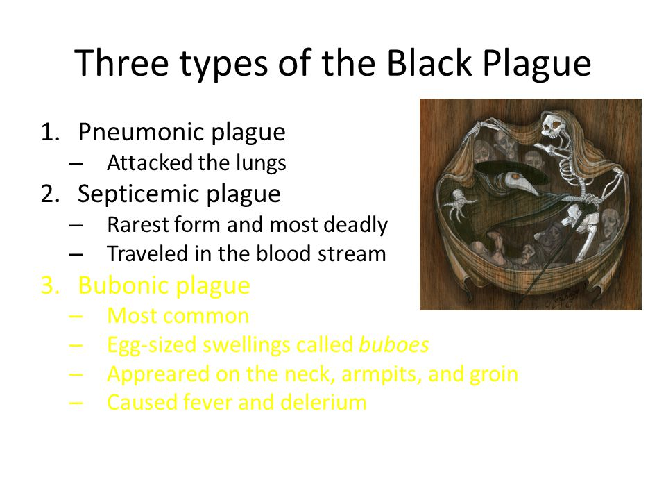 Three types of the Black Plague