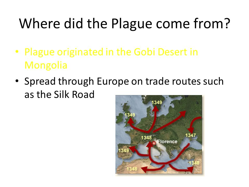 Where did the Plague come from