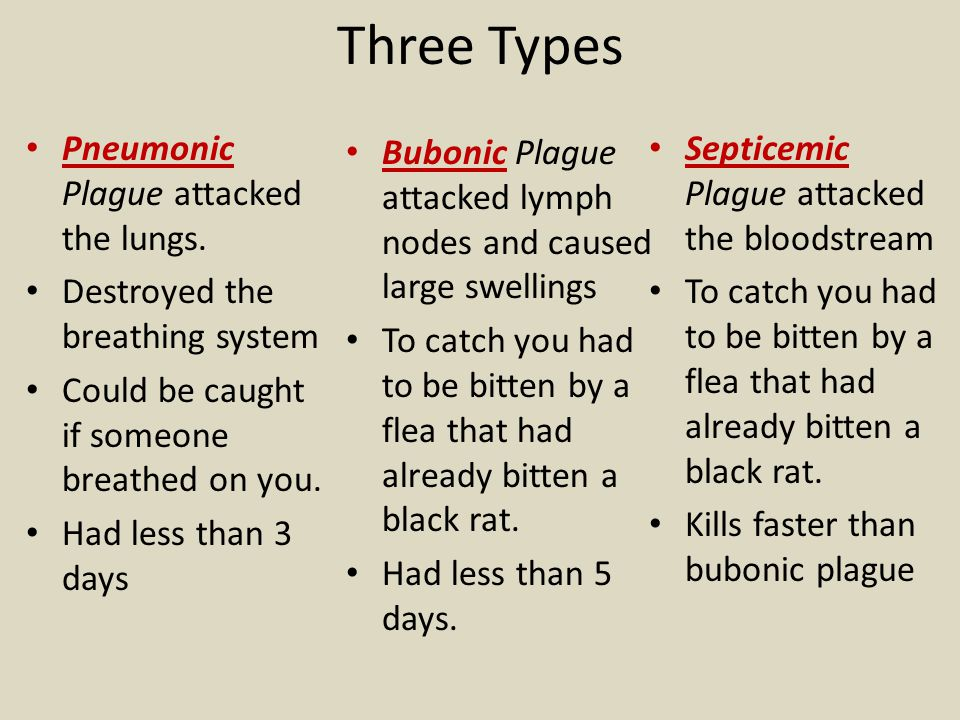 Three Types Pneumonic Plague attacked the lungs.
