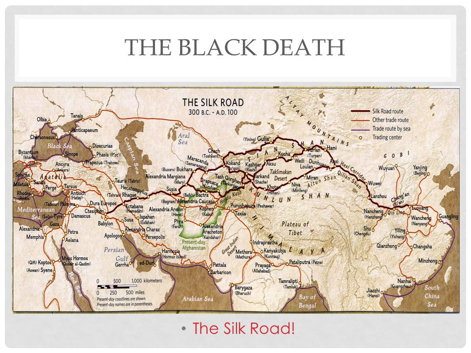 The Black Death The Silk Road!