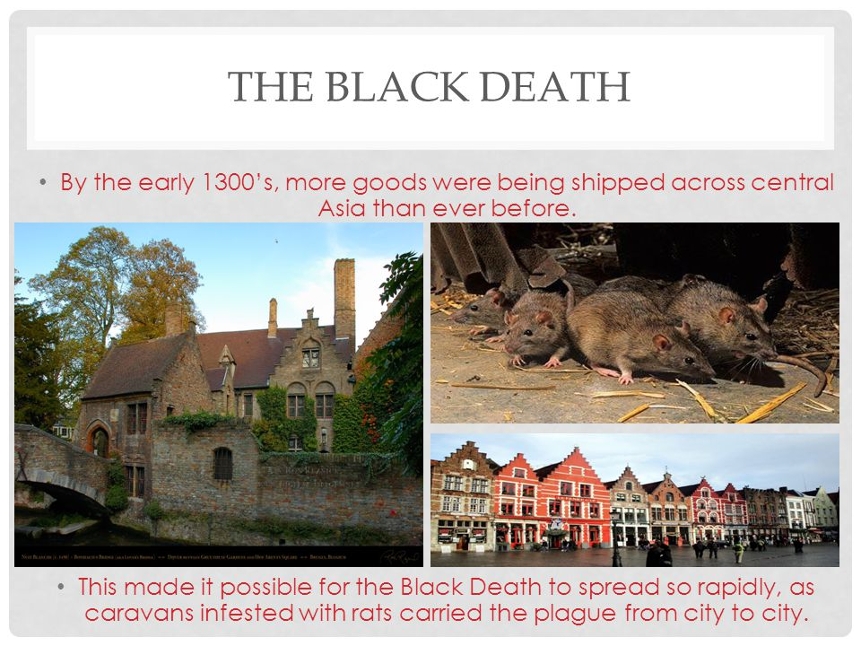 The Black Death By the early 1300's, more goods were being shipped across central Asia than ever before.
