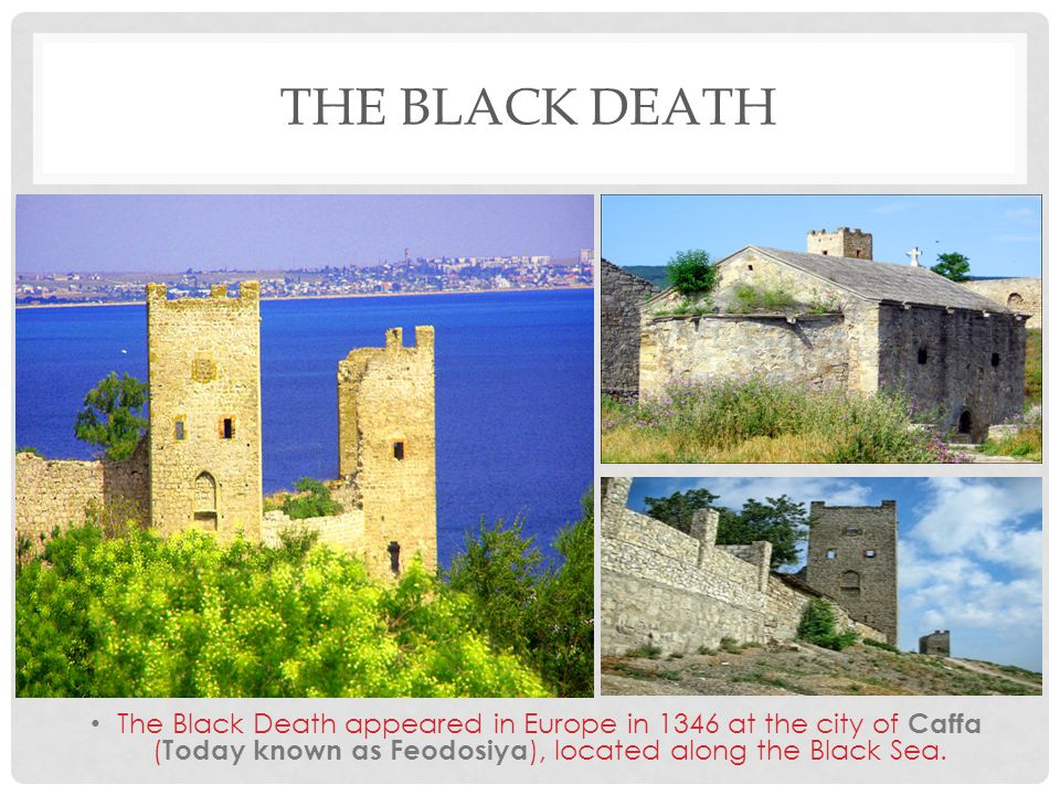 The Black Death The Black Death appeared in Europe in 1346 at the city of Caffa (Today known as Feodosiya), located along the Black Sea.