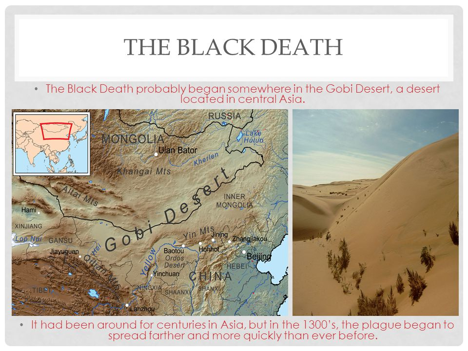 The Black Death The Black Death probably began somewhere in the Gobi Desert, a desert located in central Asia.
