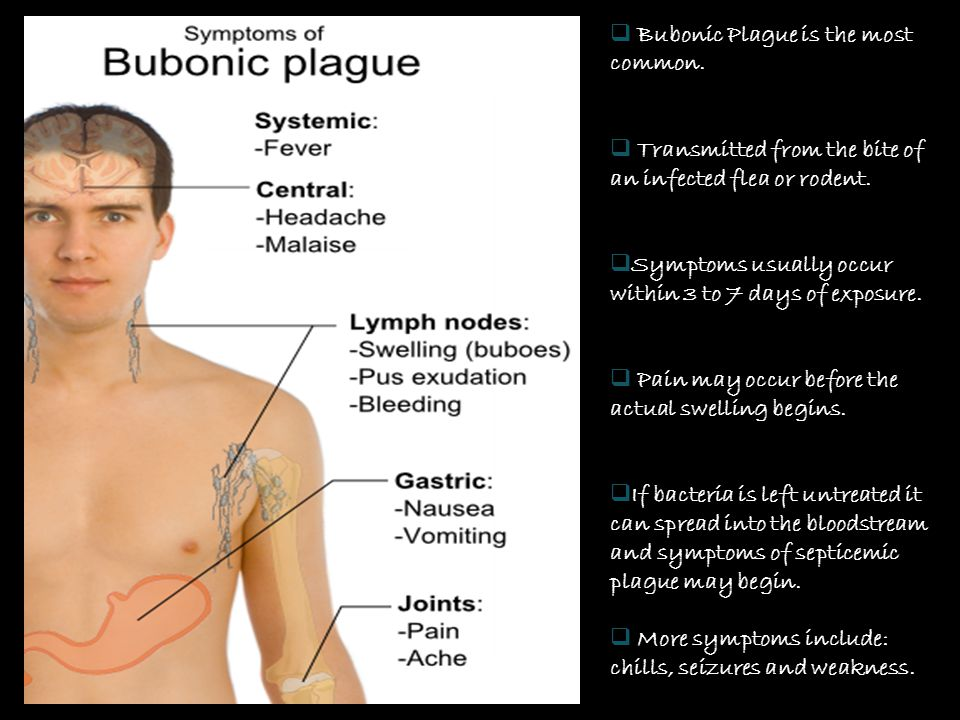 Bubonic Plague is the most common.