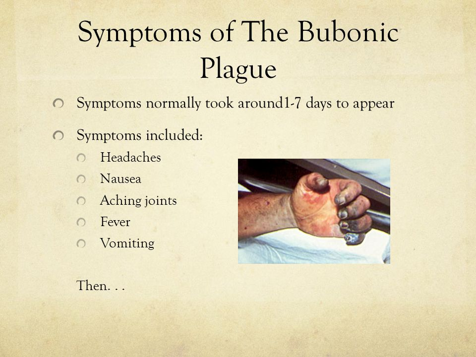 Symptoms of The Bubonic Plague