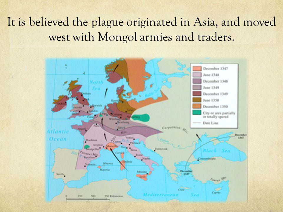 It is believed the plague originated in Asia, and moved west with Mongol armies and traders.
