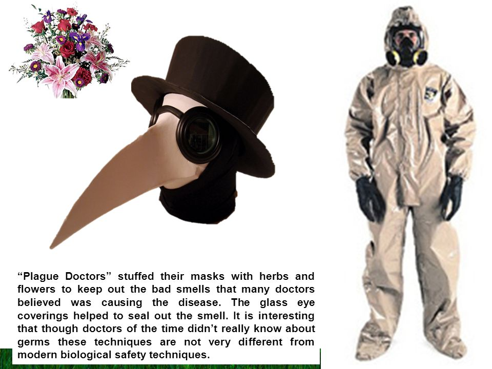 Plague Doctors stuffed their masks with herbs and flowers to keep out the bad smells that many doctors believed was causing the disease.