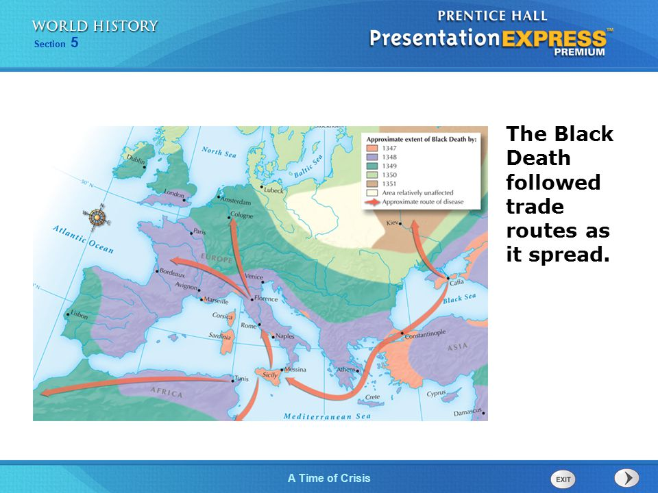 The Black Death followed trade routes as it spread.