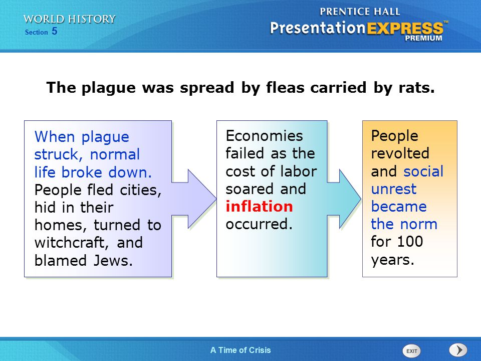 The plague was spread by fleas carried by rats.