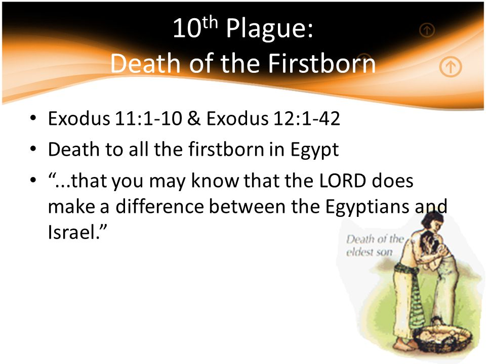 10th Plague: Death of the Firstborn